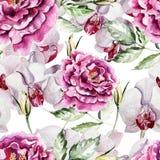 Картина с чувствительными цветками и орхидеями пиона Иллюстрация штока