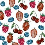 Картина с ягодами бесплатная иллюстрация
