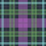 Картина тартана вектора безшовная шотландская в пурпуре Стоковое фото RF