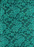 Картина текстуры бирюзы шнурка Стоковые Изображения RF