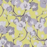 Картина текстуры дизайна украшения орхидеи цветка безшовная Стоковые Изображения