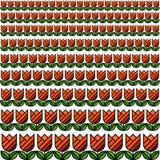 Картина текстуры поля тюльпана Стоковые Изображения