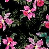 Картина тенденции вышивки флористическая безшовная с орхидеями и маслом Стоковое Изображение RF