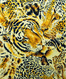 Картина тигра и леопарда и дикого животного Стоковое Изображение RF