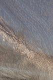 картина ткани Стоковая Фотография
