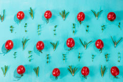 Картина томатов вишни с розмариновым маслом и тимианом Стоковое Изображение RF