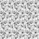 Картина тропических заводов безшовная Стоковое Изображение RF