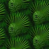 Картина тропических листьев безшовная Стоковые Фото