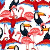 Картина тропических птиц безшовная с попугаями Стоковое Изображение