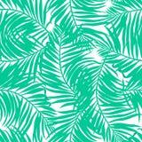 Картина тропических сочных ладоней безшовная иллюстрация штока