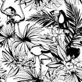 Картина тропического флористического лета безшовная с Palm Beach выходит, Стоковые Изображения RF