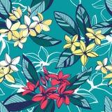 Картина тропического флористического лета безшовная с plumeria цветет wi бесплатная иллюстрация