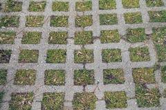 Картина тротуара - квадраты и трава цемента Стоковое Фото