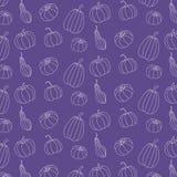Картина тыквы на фиолетовой предпосылке Картина тыквы бесплатная иллюстрация