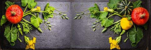 Картина тыквы с цветками, стержнями и листьями на темной предпосылке шифера, знамени Стоковая Фотография