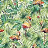 Картина фламинго Предпосылка акварели лета иллюстрация вектора
