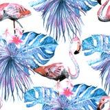 Картина фламинго Предпосылка акварели лета бесплатная иллюстрация