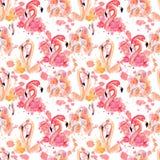 Картина фламинго акварели безшовная изолированная на белой предпосылке Стоковые Фотографии RF