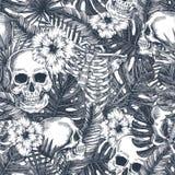 Картина хеллоуина тропическая винтажная безшовная Предпосылка черепа джунглей Creppy Флористическая анатомия иллюстрация штока