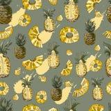 Картина цвета безшовная ананаса и абстрактного пятна Все и отрезанные элементы изолированные на прованской предпосылке иллюстрация штока