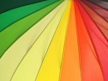 Картина цвета предпосылки зонтика Стоковое Изображение RF