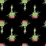 Картина цветка акварели чертополоха безшовная Стоковая Фотография