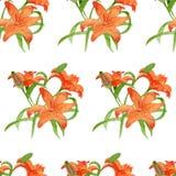 Картина цветка акварели Lili безшовная Стоковое Изображение RF