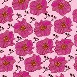 Картина цветка безшовная - иллюстрация Стоковая Фотография RF