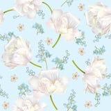 Картина цветка весны бесплатная иллюстрация