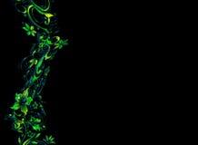 картина цветка граници Стоковое Изображение RF