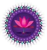 Картина цветка лотоса Стоковое Изображение