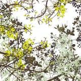 картина цветка предпосылки искусства цифровая Стоковое Изображение RF