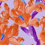 Картина цветка радужки акварели безшовная Стоковое Изображение RF