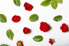 Картина цветка сделанная от красных роз и листьев Белая деревянная таблица Стоковое фото RF