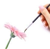 картина цветка Стоковая Фотография