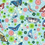 картина цветков бабочек безшовная Стоковая Фотография