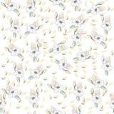 Картина цветков безшовная для бумаги, печатания ткани и проектов сети Предпосылка цвета слоновой кости бесплатная иллюстрация