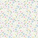 картина цветков безшовная watercolo цветка предпосылки пастельное романтичное Стоковая Фотография