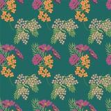 Картина цветков лета Тонкая линия элементы Предпосылка безшовного вектора флористическая зеленая Безшовный цветочный узор зеленог иллюстрация штока