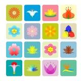 Картина цветков стоковое изображение