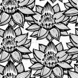 Картина чернил лотоса нарисованная рукой безшовная/черно-белая лилия воды Стоковое Изображение