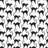 Картина черного кота безшовная Текстура котов повторяющийся Предпосылка хеллоуина бесконечная также вектор иллюстрации притяжки c Стоковые Изображения RF