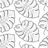 Картина черно-белых графических тропических листьев безшовная Стоковые Изображения RF