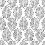 Картина черно-белых графических тропических листьев безшовная Стоковые Фото