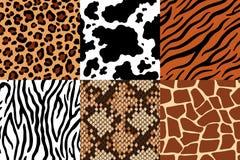 Картина шкур Кожа леопарда, зебра ткани и кожа тигра Жираф сафари, печать коровы и змейка безшовные иллюстрация вектора