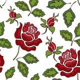 Картина шнурка цвета безшовная с розой на белой предпосылке бесплатная иллюстрация