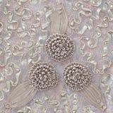Картина шнурка цветка Стоковые Изображения