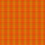 Картина шотландки Стоковая Фотография RF