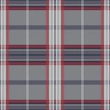 Картина шотландки Стоковое Изображение