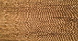 картина штофа флористическая безшовная королевские обои Бумага предпосылки золота, текстура старым огорченный годом сбора виногра Стоковая Фотография